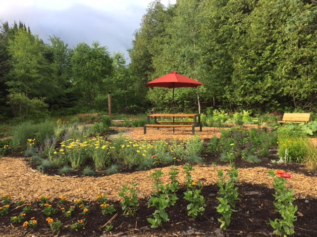 LCP Flower Garden 6.25.17